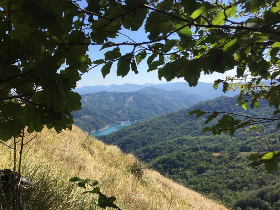 Il lago del Brugneto laggiù