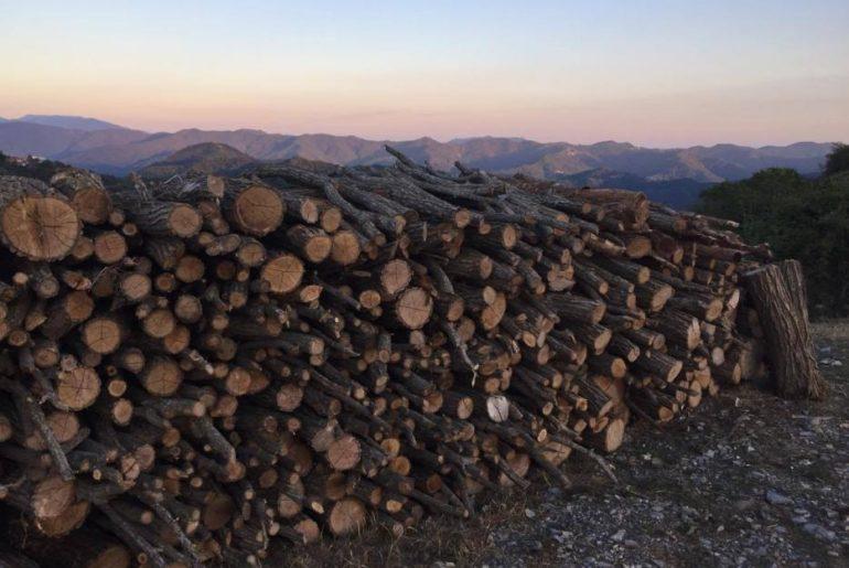 Monte Antola
