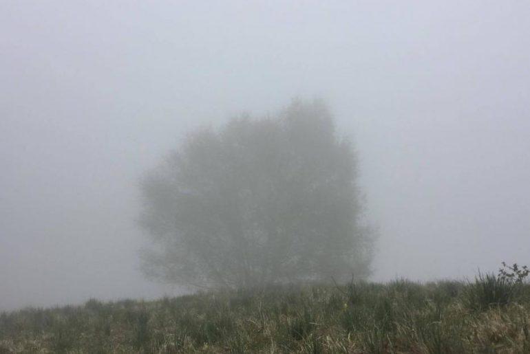 La nebbia diventa sempre più spessa