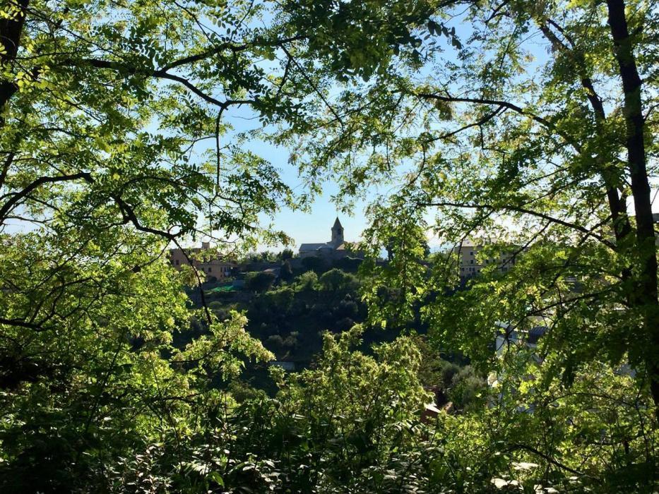 La chiesetta su via del Promontorio si intravede in mezzo al verde
