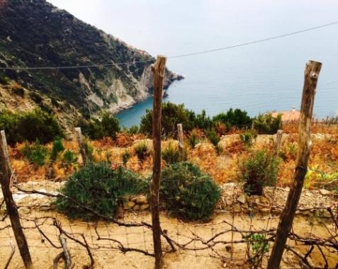 Tramonti, un luogo appartato delle Cinque Terre: come fa a non conquistarti questo paesaggio?