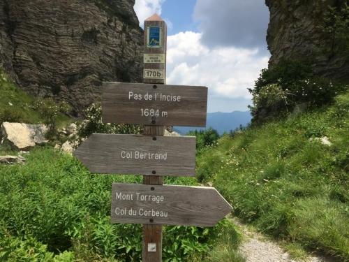 Eccoci arrivati in cima alla Gola, ora siamo sull'Alta Via dei Monti Liguri, in Francia